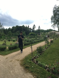 The gardens of Park Charlottenhof